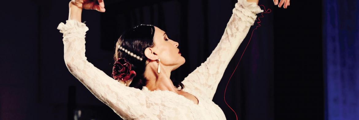 Flamenco Fire 'Viva Sevilla' (QPAC - Jan/Feb 2016)